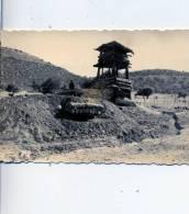 PHOTO AMATEUR 7/10 CM  GUERRE D´ALGERIE AVEC  MILITAIRE.....QUI RECONNAITRA? - Oorlog, Militair
