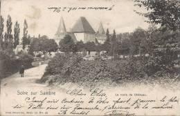 SOLRE SUR SAMBRE : La Route Du Chateau - Nels Série 10 N° 40 - Cachet De La Poste 1902 - Erquelinnes