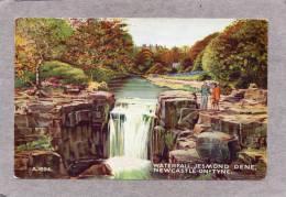36616     Regno  Unito,     Waterfall - Jesmond  Dene -  Newcastle-on-Tyne,  NV - Newcastle-upon-Tyne