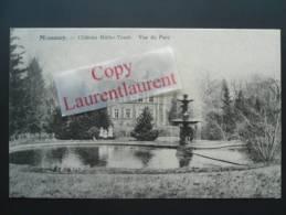 MESSANCY _ Château Muller Tesch - Vue Du Parc  1917 - Messancy