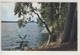 Greetings From The Ponderosa. Killbear Provincial Park, Ontario - Ontario