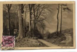 1 AK North Rine-Westphalia Aachener Wald Am Kreuz 1914 - Aachen