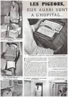 Les Pigeons , Eux Aussi Vont à L Hopital   Colombophilie - Alte Papiere