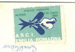 A.S.C.I. - ESPLORATORI EMILIA ROMAGNA, CAMPO  ALFERO 1966, ERINNOFILO SU CARTOLINA  ALFERO, VIAGGIATA 1966, - Scoutismo