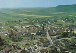 51 - Marne - BERGERES -Les-VERTUS - Vue  Générale - Format   10,4  X  14,9 - Altri Comuni
