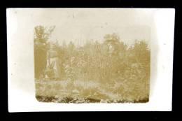 Carte Photo : Jardin Potager Paysans Récolte - Dos Vierge - Fermes