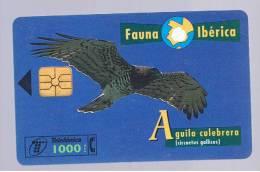 TARJETA TELEFONICA -  Fauna Iberica - Aguila Culebrera - Unclassified