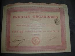 """Part Fondateur""""Engrais Organiques""""Paris 1907 Avec Tous Les Coupons.Agriculture - Landbouw"""