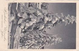 Feldpost WW2: Postcard To Stab III Artillerie-Regiment 231 FP 36298 Przeworsk über Krakau 2 Dtd Dresden 27.12.1939 - New - Weltkrieg 1939-45