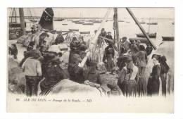 FINISTÈRE  /  ÎLE  DE  SEIN  /  PESAGE  DE  LA  SOUDE  /  Edit.  ND  N° 86  ( Texte Intéressant + Timbre EXPO De 1931 ) - Ile De Sein