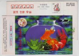 Golden Fish,China 1999 Jinyu Shirt Advertising Pre-stamped Card - Fishes