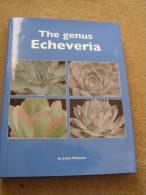 ECHEVERIA -  By JOHN PILBEAM - AS NEW - Books, Magazines, Comics