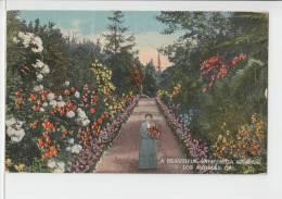 A Beautiful Garden Los Angeles California 1916 USA PC - Los Angeles