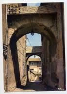 St BONNET En CHAMPSAUR--La Rue Des écuries ,cpm N° 0075  éd Combier - Autres Communes