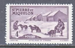 Saint Pierre And Miquelon  174   **   DOG  SLED - St.Pierre & Miquelon
