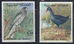 Morocco Marruecos 1976 Birds Of Prey  Aves Oiseaux Vegels - Goshawk - Purple Swamphen MH - Arends & Roofvogels