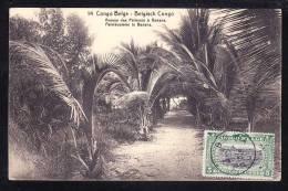 AFR-33 CONGO BELGE AVENUE DES PALMIERS A BANANA - Congo - Kinshasa (ex Zaire)