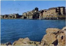 Laz   8305Nettuno –Roma – Scorcio Panoramico - Italia