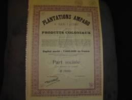 """Part Soc.""""Plantations Amparo à San-Thomé Et Produits Coloniaux""""1929 Bon état,avec Tous Les Coupons. - Agriculture"""