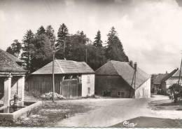 Doubs FERTANS Grande Rue Csm - Francia