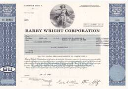 Bonds/Shares: 1981 Barry Wright Corporation, Value 100 Shares  (A 388) - Industry