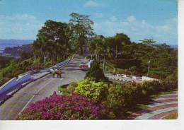 MOUNT FABER  SINGAPORE   OHL - Singapore