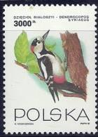 Poland Polska Polonia 1993 Birds Aves Oiseaux Vegels  - Syrian Woodpecker Dendrocopos Syriacus MLH - Uccelli