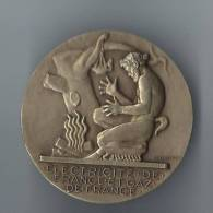 Médaille Electricité Et Gaz De France /vers 1950      D208 - Sciences & Technique