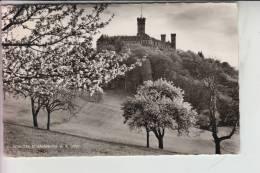 """6252 DIEZ, Schloss Schaumburg, Landpoststempel """"Schaumburg üb. Diez"""" 1960 - Diez"""