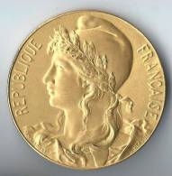 Médaille De Table/Musée Du Travail Et De La Mutualité/République Française/Massonnet-Hercule/Paris/vers 1900   D200 - France