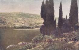 PALESTINE SERIES - CANA OF GALILEE - Palestine