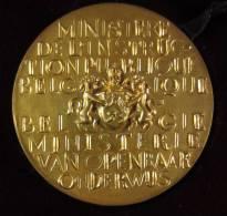 M01195 Ministère Instruction Publique Belgique Brueghel Rubens Franck Leplae 1955-1959 (230 G.) - Belgium