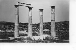 Délos Le Péristyle De L'Etablissement Des Poséidoniastes - Grèce