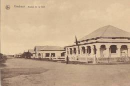 Afrique -  Congo Belge - Kinshasa - Avenue De La Cité - Kinshasa - Léopoldville