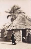 Afrique - Tchad -  Binder - Village - Tchad