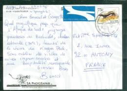 Carte Postale D'afrique Du Sud Affranchie Pour La France En 1995 - LL15303 - Afrique Du Sud (1961-...)