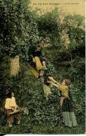 N°29344 -cpa La Vie Aux Champs -la Fin Du Jour- - Agriculture