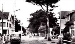 CARNAC - Avenue De Kermario - CPSM TBon Etat (voir Scan) - Carnac