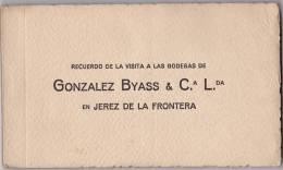 Carnet Complet De 12 CPA    Las Bodegas De GONZALEZ BYASS & C.L.  En Jerez De La Frontera (Andalousie  ) - Vignes