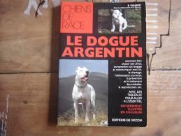 Chiens De Race LE DOGUE ARGENTIN P Vianini DE VECCHI CHIEN DOG - Animals