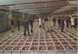 Cuxhaven Seefischmarkt Fische Verkaufshalle 18.9.1974 - Markthallen