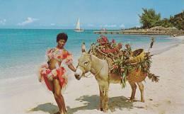 "Woman In Floor Show Costume On Beach W/ Donkey ""Charlie"" Jamaica 1940-60s - Jamaica"