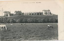 BAYONNE - Les Arênes - Bayonne