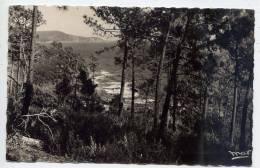 """CAVALAIRE SUR MER---1952--Bon Porto ,cpsm 9 X 14 N° 4067  éd  Mar Coll """"Chez Jeannette"""" - Cavalaire-sur-Mer"""