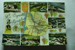 D 37 - St Estephe, St émilion, Bordeaux, St Trelody Près Lesparre, Podensac, Sauternes, Château Lafite Rothschild - Non Classificati