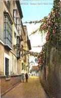 SEVILLE - SEVILLA - Antiguo Barrio Santa Cruz - Ed. C.R.S. N° 127   -    (3173) - Sevilla