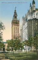 SEVILLE - SEVILLA - Catedral Giralda Y Patio De Naranjos - Ed. C.R.S. N°  84  -      (3175) - Sevilla