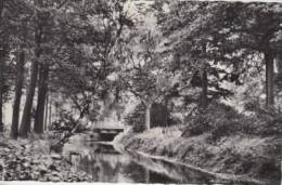Kasterlee  Zicht Op De Nete         Scan 4021 - Kasterlee