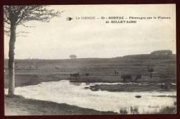 Cpa Du 19  Sornac  La Corrèze Pâturages Sur Le Plateau De Millevache       2LIO1 - France