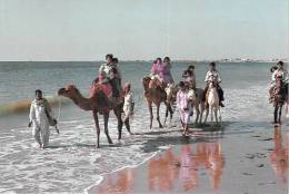 Asie > PAKISTAN - Hawks Bay Karachi (animation-Editions :Venus Ageny 341) *PRIX FIXE - Pakistan